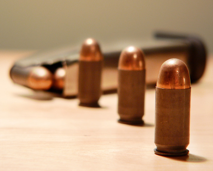 Open Letter to the Residents of District 21: 2nd Amendment Rights